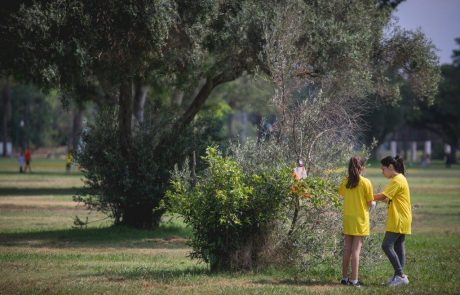 """לזכר חלל צה""""ל: לרוץ בין ג'ירפות וקופים בספארי"""