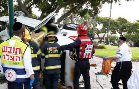 רמת אפעל: בת 80 התנגשה בעץ ונהרגה